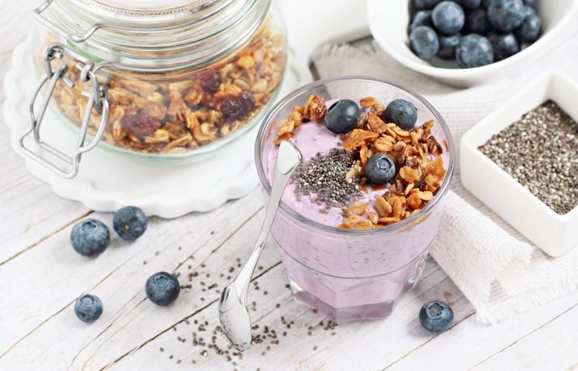Mixed Berry Frozen Yoghurt Fortisip | Nutricia