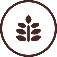 Icon of a plant