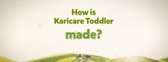 How is Karicare Toddler made?
