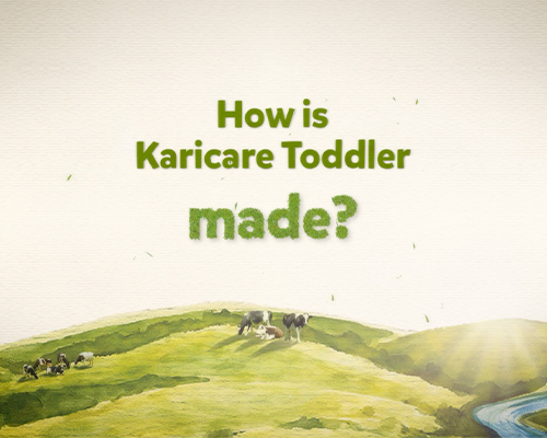 How is Karicare toddler made