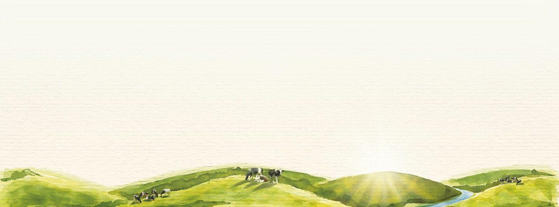 Karinourish - Rural Background With Cows